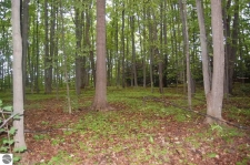 Listing Image #1 - Land for sale at Bay Valley Drive, Williamsburg MI 49690