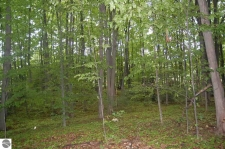 Listing Image #2 - Land for sale at Bay Valley Drive, Williamsburg MI 49690
