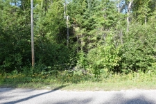 Land for sale in Cheboygan, MI