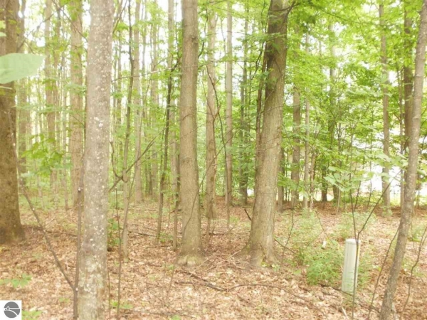 Listing Image #3 - Land for sale at Antioch Drive, Mesick MI 49668