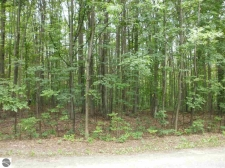 Listing Image #1 - Land for sale at Antioch Drive, Mesick MI 49668