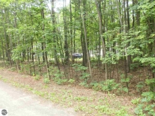 Listing Image #2 - Land for sale at Antioch Drive, Mesick MI 49668