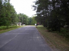 Listing Image #2 - Land for sale at XXX ANN ARBOR, Prudenville MI 48651