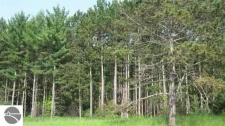 Land for sale in South Boardman, MI