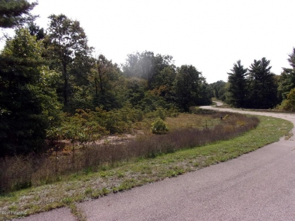 Listing Image #1 - Land for sale at 1685 Ryan Woods Court 2, Allegan MI 49010