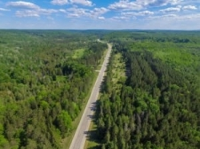 Land for sale in Wolverine, MI