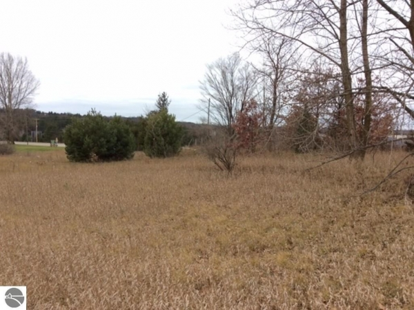 Listing Image #1 - Land for sale at 1745 S Mitchell Street, Cadillac MI 49601