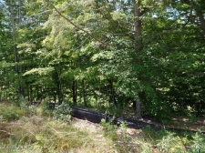 Listing Image #1 - Land for sale at 612 Artisan Row Court 25, Douglas MI 49406