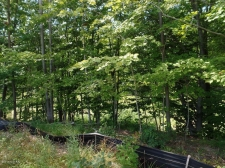 Listing Image #3 - Land for sale at 612 Artisan Row Court 25, Douglas MI 49406