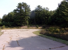 Listing Image #1 - Land for sale at 1691 Ryan Woods Court 1, Allegan MI 49010