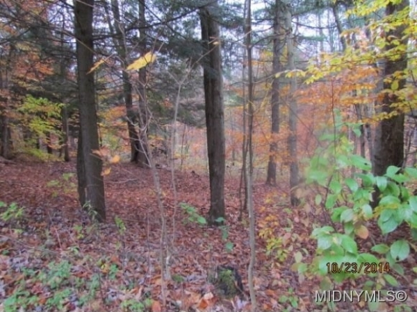 Listing Image #1 - Land for sale at 1 Florence Hill Road, Camden NY 13316