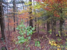 Listing Image #2 - Land for sale at 1 Florence Hill Road, Camden NY 13316