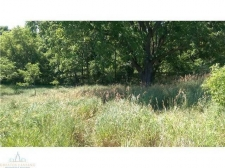 Land for sale in Perry, MI