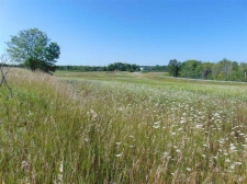 Land for sale in Levering, MI