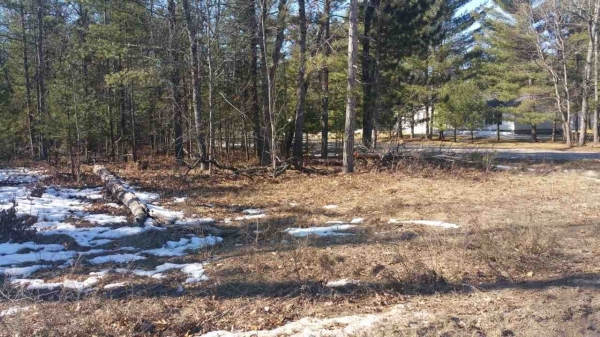 Listing Image #3 - Land for sale at XXX MCINTYRES LANDING, Grayling MI 49738