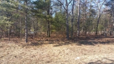 Listing Image #1 - Land for sale at XXX MCINTYRES LANDING, Grayling MI 49738