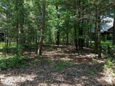 Listing Image #3 - Land for sale at VL Ottawattamie Drive, Pentwater MI 49449