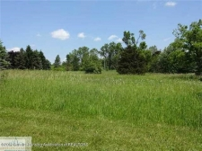 Land for sale in Dimondale, MI
