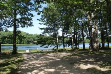 Listing Image #2 - Land for sale at 0 Alpine Drive, Reed City MI 49677
