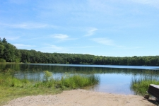 Listing Image #3 - Land for sale at 0 Alpine Drive, Reed City MI 49677