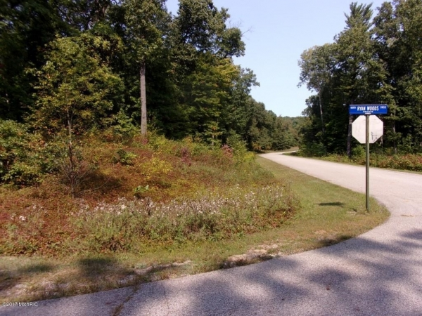 Listing Image #3 - Land for sale at Ryan Woods Drive 24, Allegan MI 49010