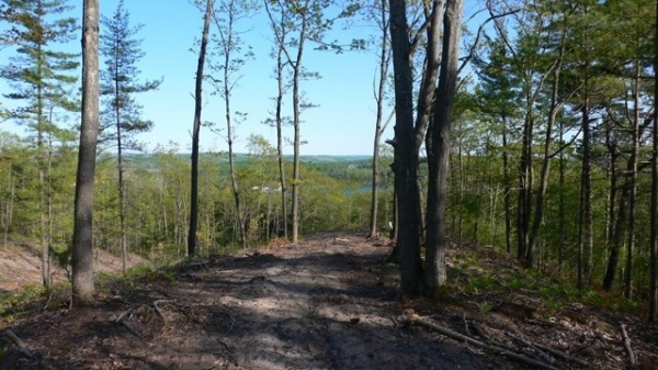 Listing Image #1 - Land for sale at Unit 6 Vistas of Walloon 6, Walloon Lake MI 49770