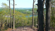 Listing Image #2 - Land for sale at Unit 6 Vistas of Walloon 6, Walloon Lake MI 49770
