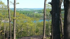Listing Image #3 - Land for sale at Unit 6 Vistas of Walloon 6, Walloon Lake MI 49770