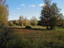 Listing Image #3 - Land for sale at LOT2/95 REMLEY RD, Berne NY 12023