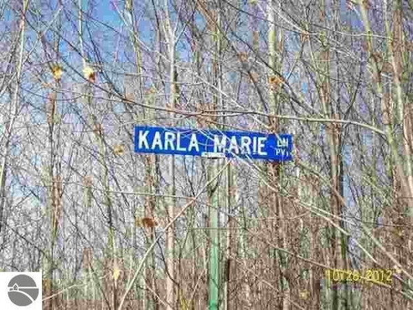 Listing Image #3 - Land for sale at 9435 Karla Marie Lane, Mancelona MI 49659