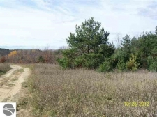 Listing Image #1 - Land for sale at 9435 Karla Marie Lane, Mancelona MI 49659