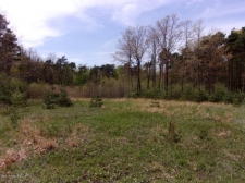 Listing Image #1 - Land for sale at Lot 6 Serenity Pines Drive, Fennville MI 49408