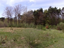Listing Image #2 - Land for sale at Lot 6 Serenity Pines Drive, Fennville MI 49408
