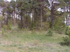 Listing Image #3 - Land for sale at Lot 6 Serenity Pines Drive, Fennville MI 49408