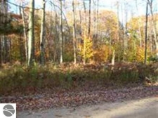 Listing Image #1 - Land for sale at 1 Fredmar Drive, Interlochen MI 49643