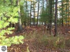 Listing Image #2 - Land for sale at 1 Fredmar Drive, Interlochen MI 49643