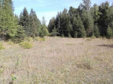 Listing Image #1 - Land for sale at TBD M35, Rock MI 49880