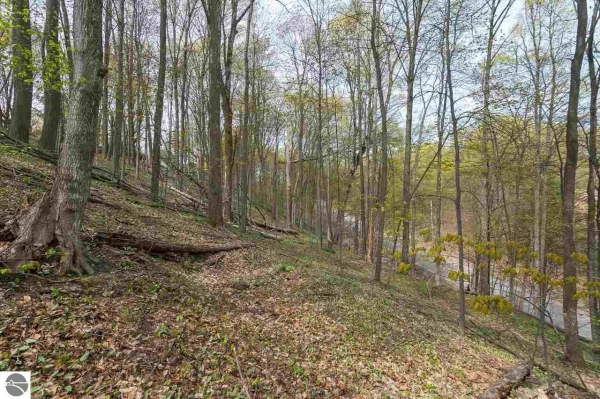 Listing Image #1 - Land for sale at Walker Street, Benzonia MI 49616