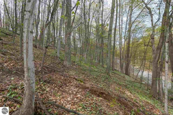 Listing Image #2 - Land for sale at Walker Street, Benzonia MI 49616