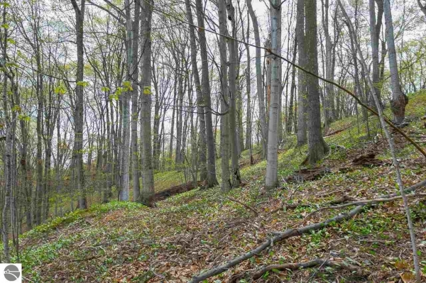 Listing Image #3 - Land for sale at Walker Street, Benzonia MI 49616