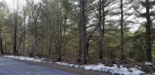 Land for sale in New Baltimore, NY