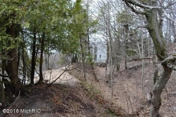 Listing Image #2 - Land for sale at Erie Trail, Shelby MI 49455