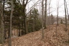 Listing Image #3 - Land for sale at Erie Trail, Shelby MI 49455