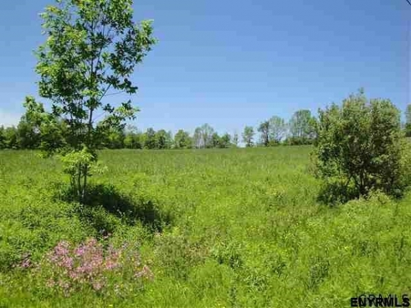 Listing Image #2 - Land for sale at 0 KENYON RD, Rensselaerville NY 12147