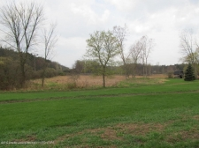 Listing Image #2 - Land for sale at 6269 Green Road, Haslett MI 48840