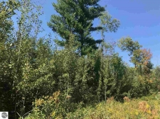 Listing Image #2 - Land for sale at Co Road 633, Grawn MI 49637