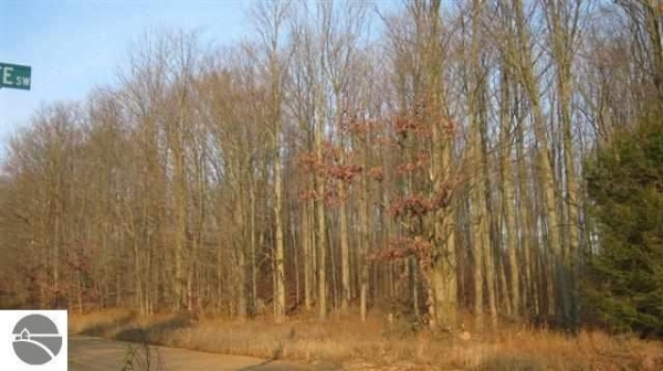 Listing Image #2 - Land for sale at 000 Inman Road, South Boardman MI 49680