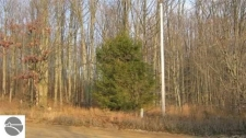 Listing Image #1 - Land for sale at 000 Inman Road, South Boardman MI 49680