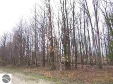 Listing Image #3 - Land for sale at 000 Inman Road, South Boardman MI 49680