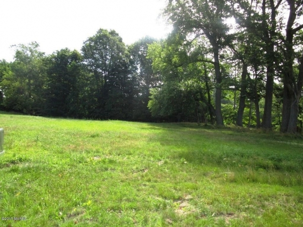 Listing Image #2 - Land for sale at 699 Golf View Drive 14, Douglas MI 49406